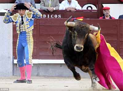 People have been betting on bull fighting in spain for many years