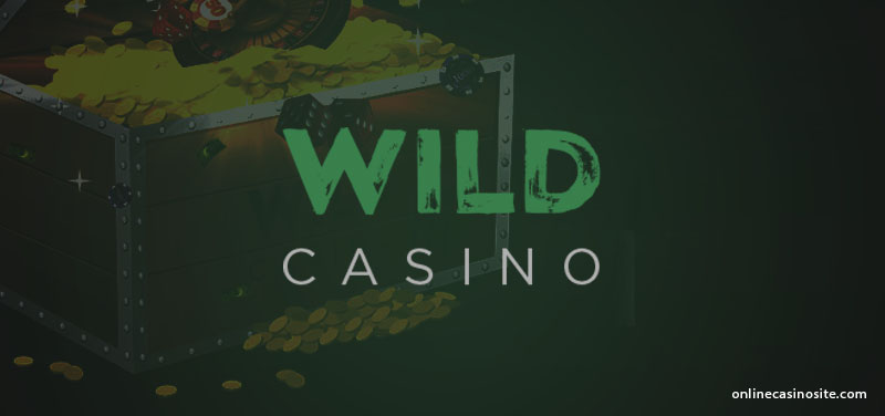Wild Online Casino Review